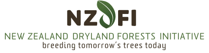 NZ Dryland Forests Initiative