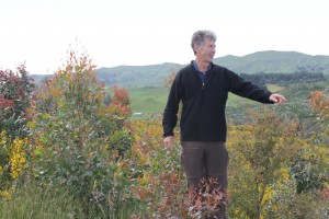 Paul Millen, NZDFI Project Manager, inspects a ground-durable eucalypt trial