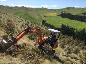 Digging soil pits.