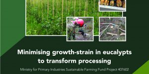 Growth strain report available
